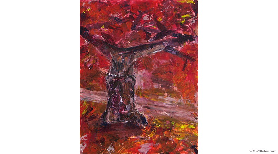 Træ i Kongens Have web